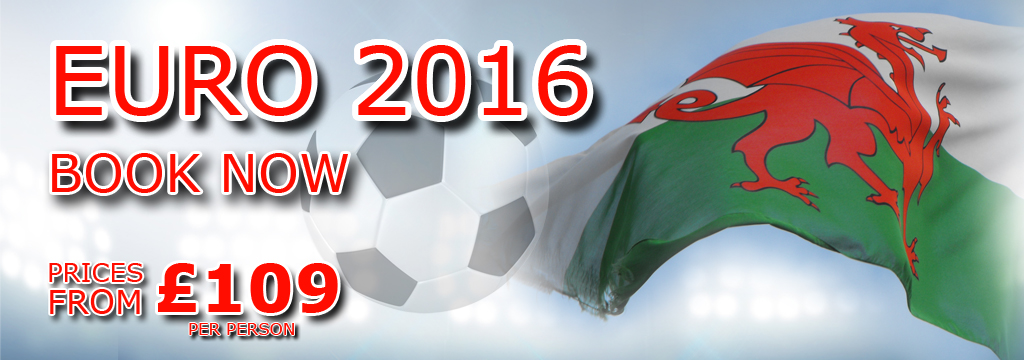 Euro 2016 football Website front page